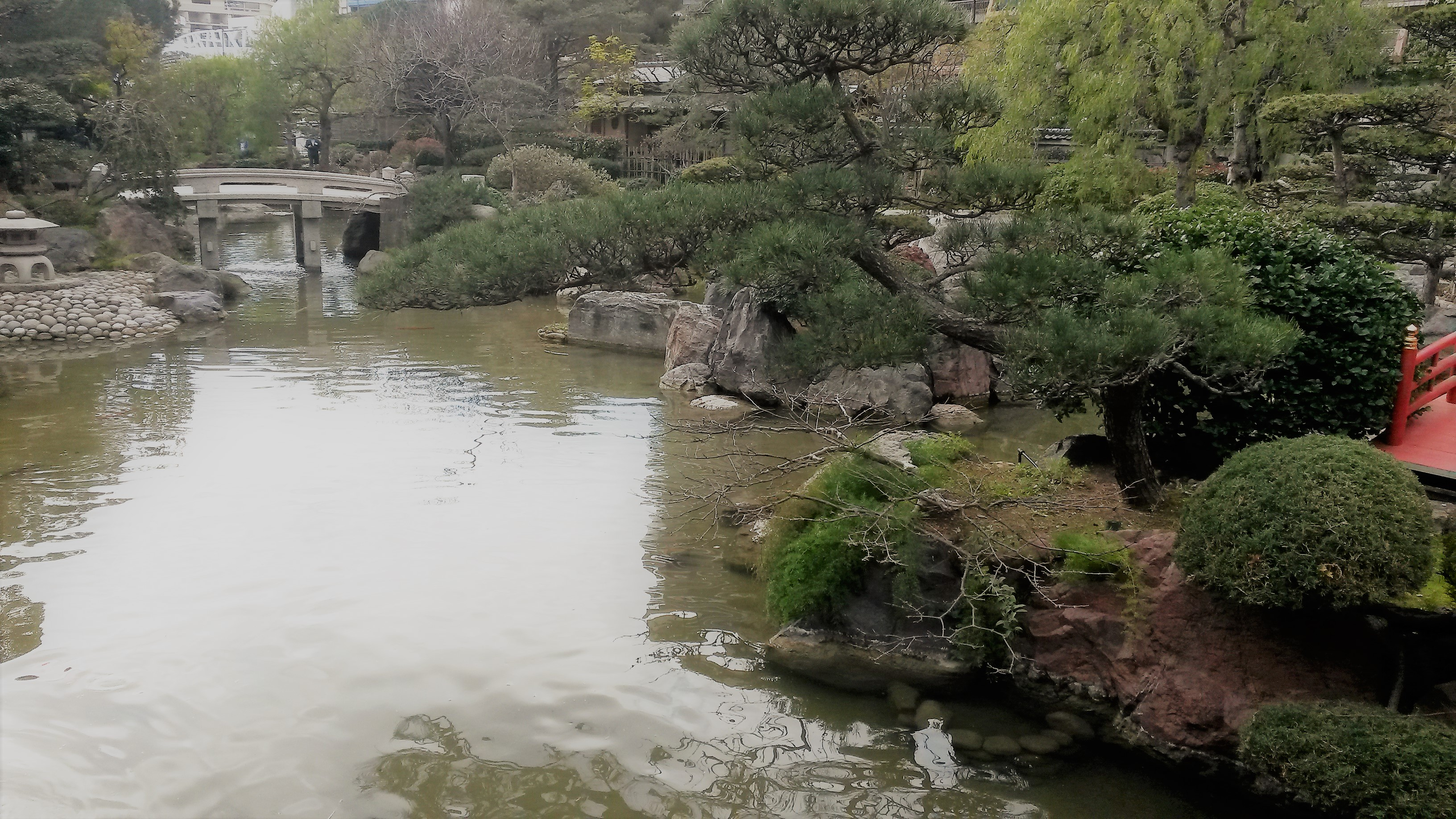 le jardin japonais de monaco larina translation. Black Bedroom Furniture Sets. Home Design Ideas